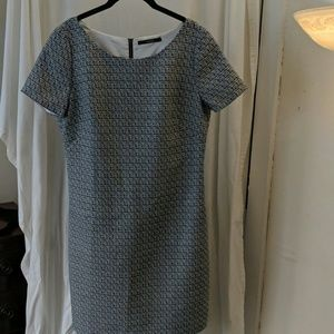 Tahari s/s navy/white shift dress - EUC - size 6
